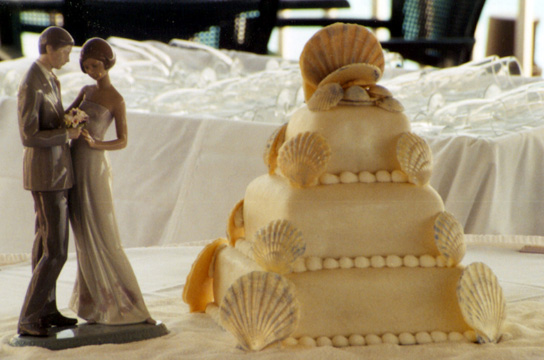 This square confection is accented with white chocolate fan and scallop shells at each corner and as topper.